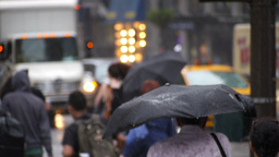 Rainy New York Streets Stock Video Footage