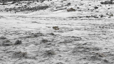 A river rages during a big storm Stock Video Footage