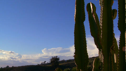 Gorgeous clouds behind a mountain and cactus along Stock Video Footage