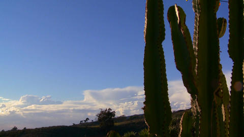 Gorgeous clouds behind a mountain and cactus along Footage