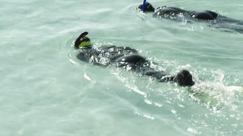 Two people swim by with snorkel gear Stock Video Footage