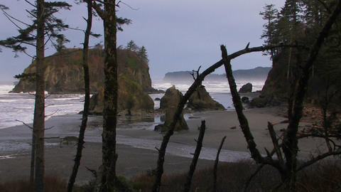 A pretty shot of the Oregon coastline Stock Video Footage