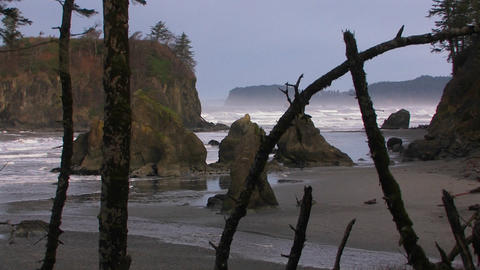 A pretty shot of the Oregon coastline Stock Video Footage