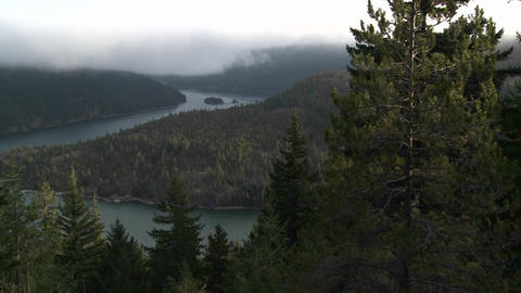 Nice over view of the Columbia River with pine tre Stock Video Footage