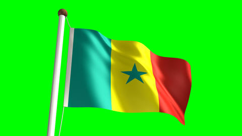 Senegalese flag Stock Video Footage
