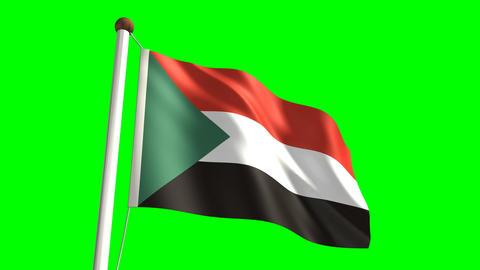 Sudan flag Stock Video Footage
