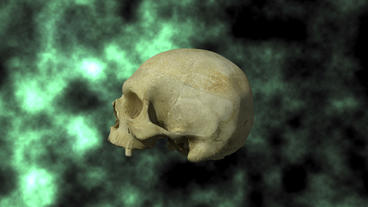 Actual Human Skull, 3D Scan, rotating on BG 25P Stock Video Footage