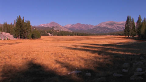 A landscape of dry ground with trees and mountains Stock Video Footage