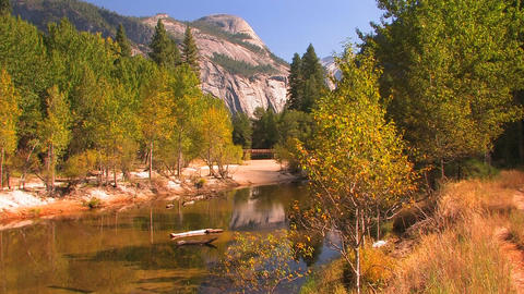 Trees reflect in a mountain stream in Yosemite Nat Footage