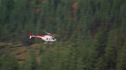 A helicopter flies over a pine forest at Mt. St. H Footage