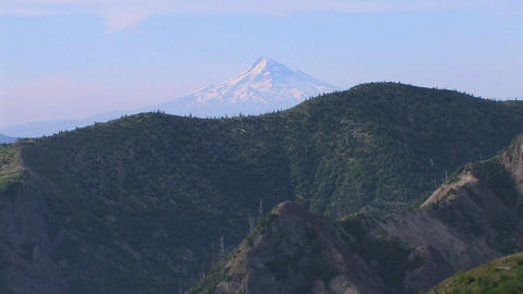 A snow-capped mountain rises above a forest at Mt. Footage