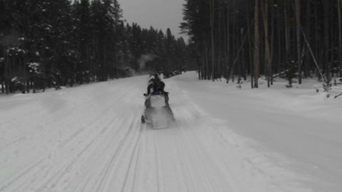 A POV of snowmobiles driving along a snowy forest Stock Video Footage