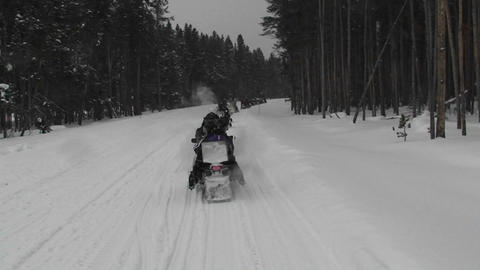 A POV of snowmobiles driving along a snowy forest  Footage