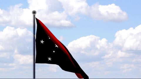 Animated Flag of Papua New Guinea Stock Video Footage