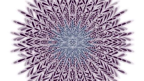 retro feather flower pattern,buddhism mandala,oriental... Stock Video Footage