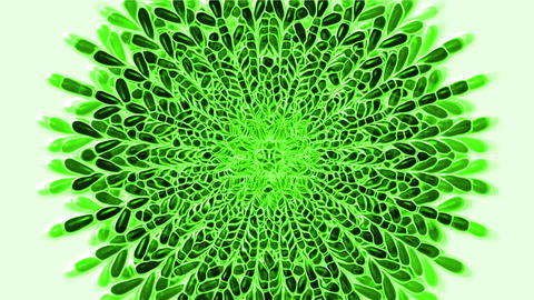 green feather flower pattern,buddhism mandala,oriental... Stock Video Footage