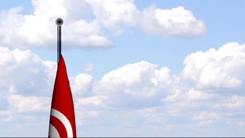 Animated Flag of Tunisia / Tunesien Stock Video Footage