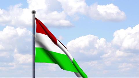 Animated Flag of Hungary / Ungarn Stock Video Footage