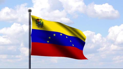Animated Flag of Venezuela Stock Video Footage