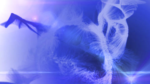fur background purple Stock Video Footage