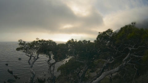 Beautiful sunset over the sea. Mountains and pine Stock Video Footage