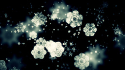 Falling Snow Flakes Stock Video Footage