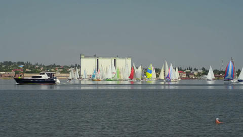 Great sailing regatta Footage