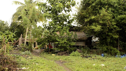 A Derelict House in Rural Thailand Stock Video Footage