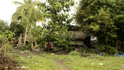 A Derelict House In Rural Thailand stock footage