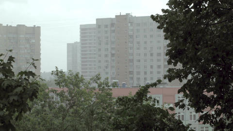 Heavy rain. Buildings and trees Stock Video Footage
