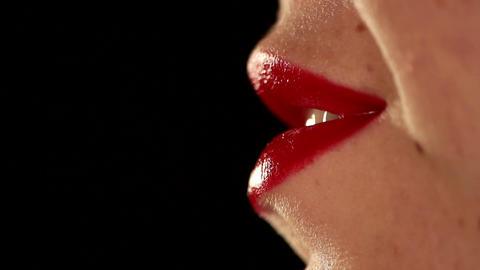 Kisses Stock Video Footage