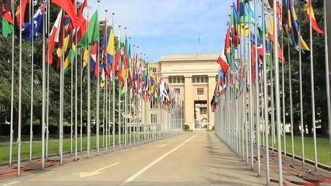 UNO Geneva Stock Video Footage