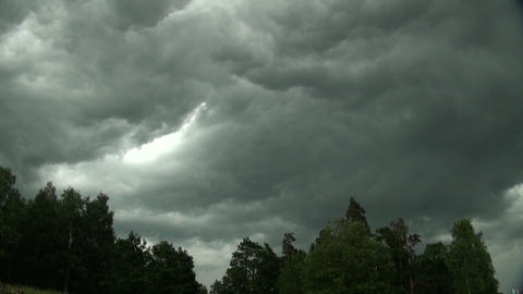 Storm clouds over the forest Stock Video Footage