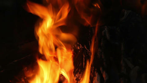 fire in fireplace, natural abstract background Footage