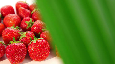 strawberries - dolly shot Stock Video Footage