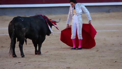 Virtuoso torero Footage