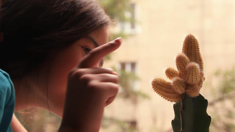 The girl touches a cactus Stock Video Footage