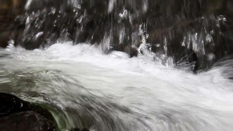 Water spring Footage