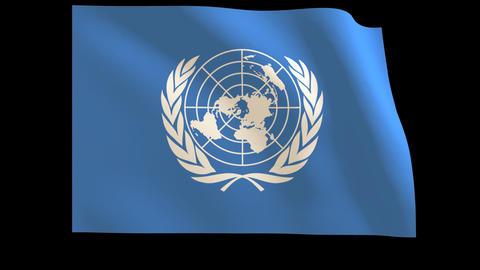 The United Nations (U.N.) Flag_012 Stock Video Footage