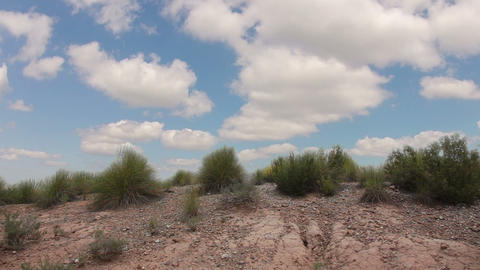 Grass in the desert and clouds Footage