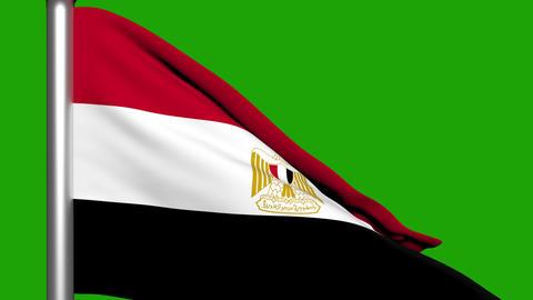 Flag Animation Egypt Stock Video Footage