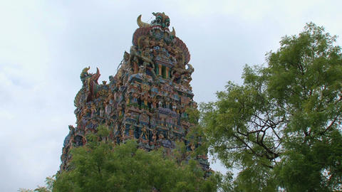 Top of The Meenakshi Temple behind the trees Footage