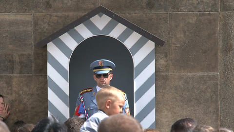 Guard at Prague castle Stock Video Footage