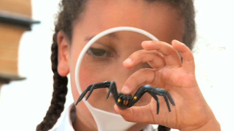 Cute african american schoolgirl examines a plastic spider Stock Video Footage