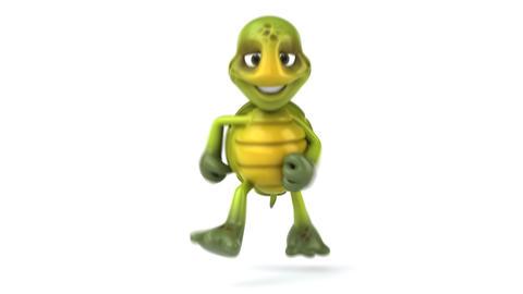 turtle run 1 Stock Video Footage
