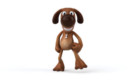 dog run 1 Stock Video Footage