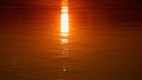 Sundown on river Stock Video Footage