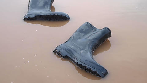 gumboots Stock Video Footage