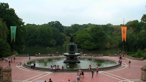 Central Park Stock Video Footage
