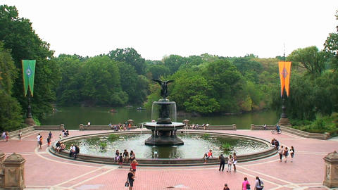 Central Park Footage